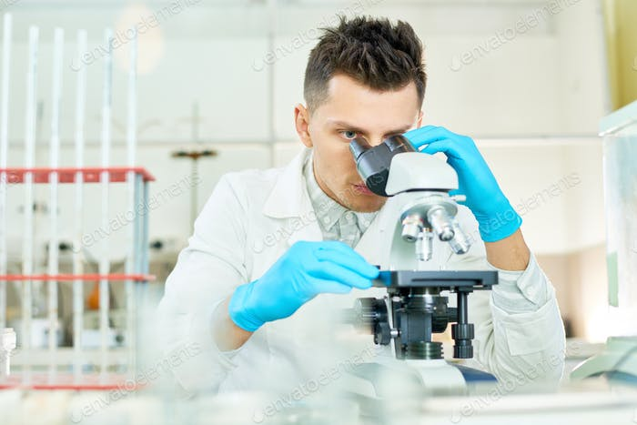 Concentrated Researcher Using Microscope