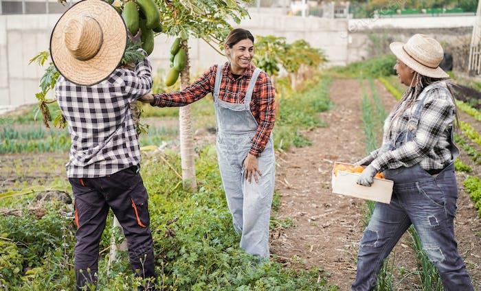 Gente de agricultores multirraciales que trabajan en el jardín - Enfoque en la cara de mujer
