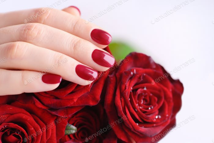 Hands of a woman with red manicure with a bouquet of red roses.