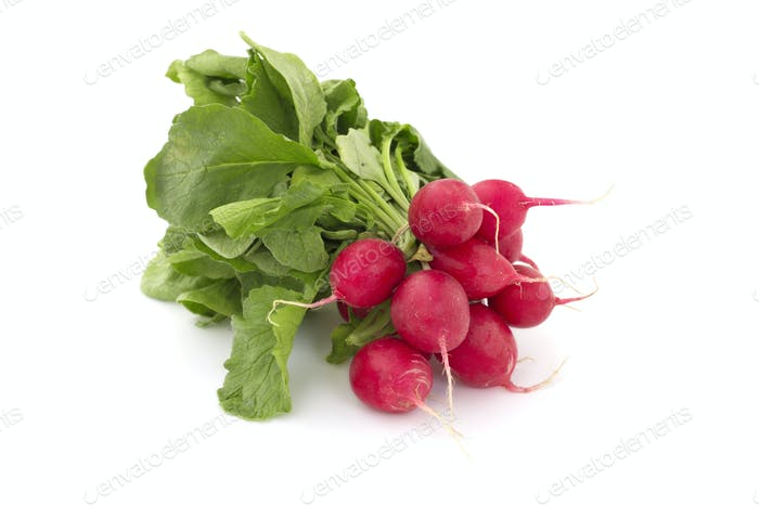 small bunch of radishes on white background