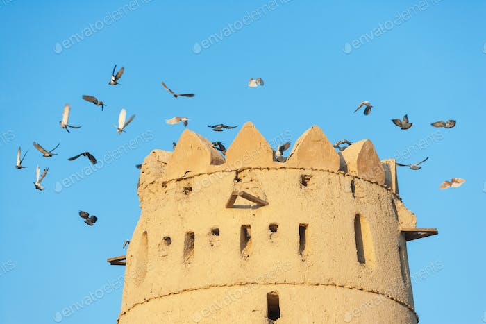 Tower and Pigeons in Al Jahli Fort in Al Ain