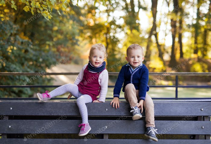 Twin toddler sibling boy and girl sitting on bench in autumn park