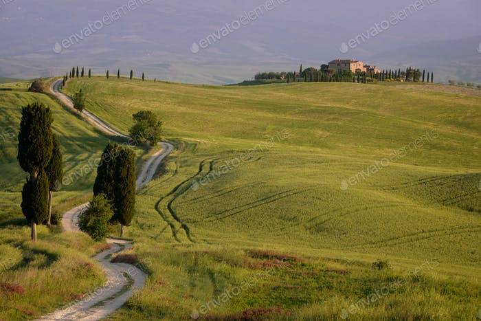 Gravel road in a landscape in Tuscany