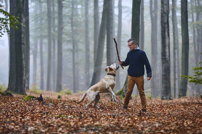 Man with dog in autumn forest