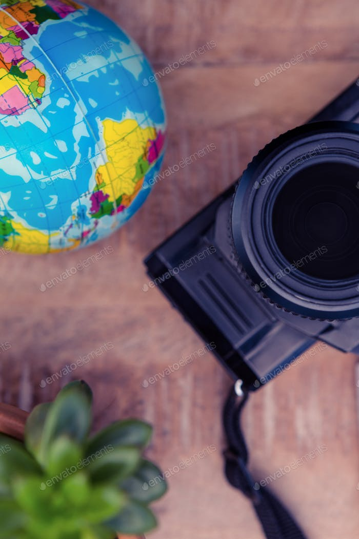 Camera and globe by potted plant on table