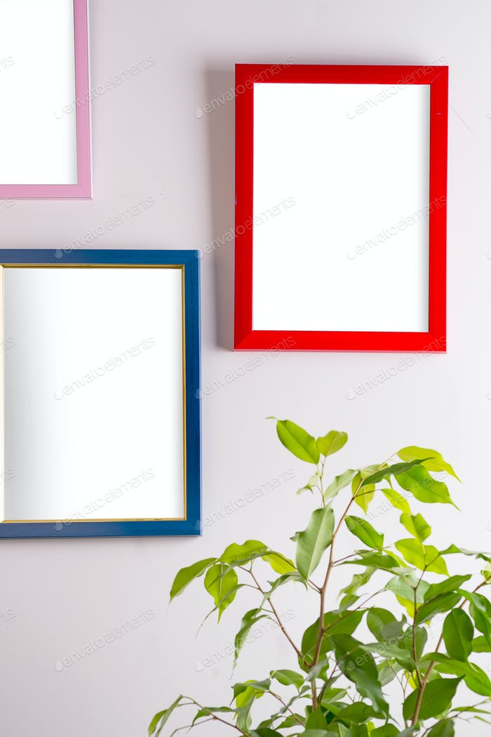 Red frame on a wall room with green in pot, Mock-up
