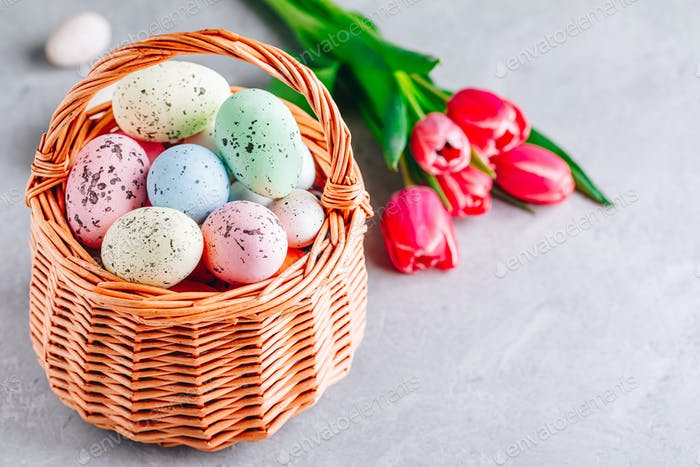 Colorful Easter eggs in the basket with tulip flowers on gray stone concrete background