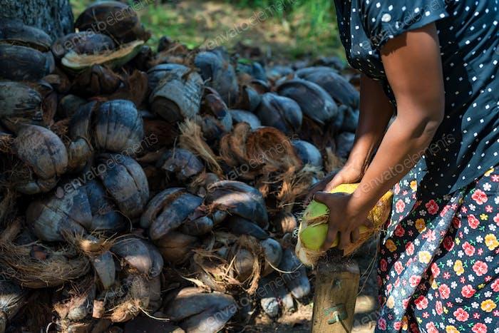 Indische Frau dehusks Kokosnüsse