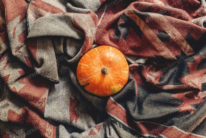 Autumn pumpkin on stylish scarf fabric flat lay