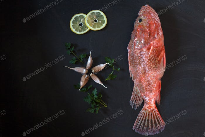 Red Scorpionfish Lemon Garlic