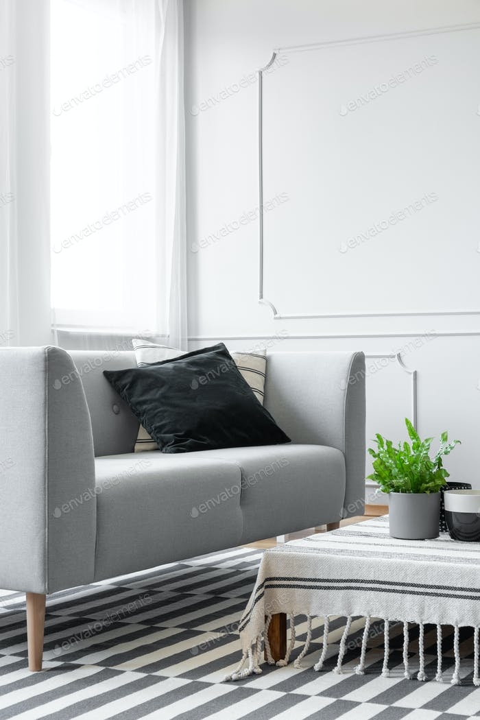 Plant on table next to grey settee with black cushion in living
