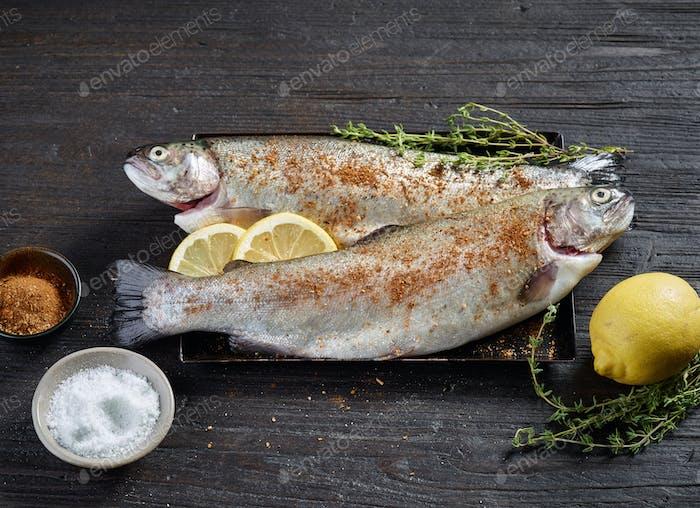 fresh raw fishes