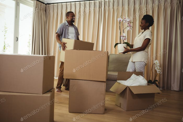 Smiling couple holding card boxes in living room