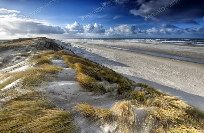 view from sand dune on north sea coast