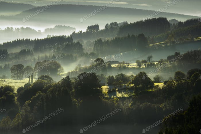 Morning Mist between Wooded Hills