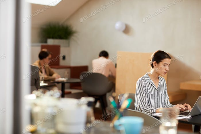 Woman Using Internet in Cafe