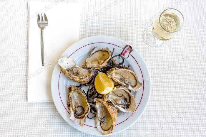 Fresh oysters with white wine