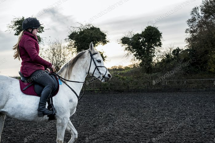 Young woman riding on white Cob horse in paddock.