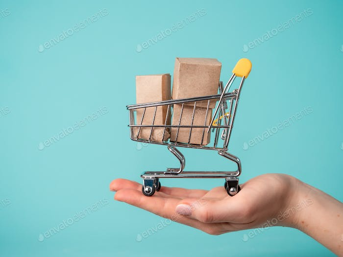 Toy shopping cart in female hand