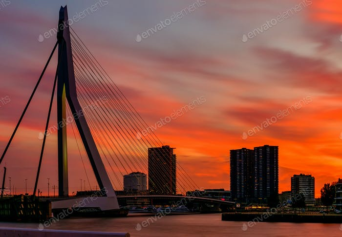 Rotterdam city cityscape with Erasmus bridge at sunset