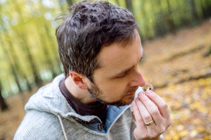Hipster man in forest picking mushrooms, smelling it