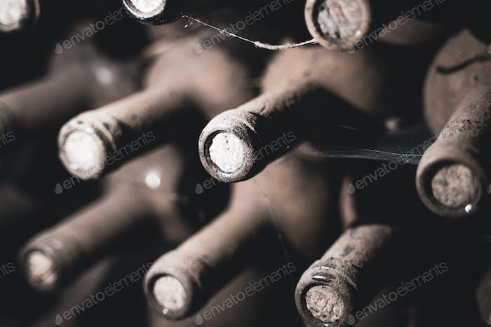 botellas de vino envejecido cubiertas con moho en bodega de vino vintage