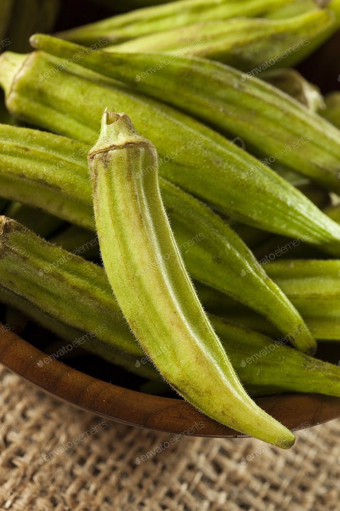 Organic Green Okra Vegetable