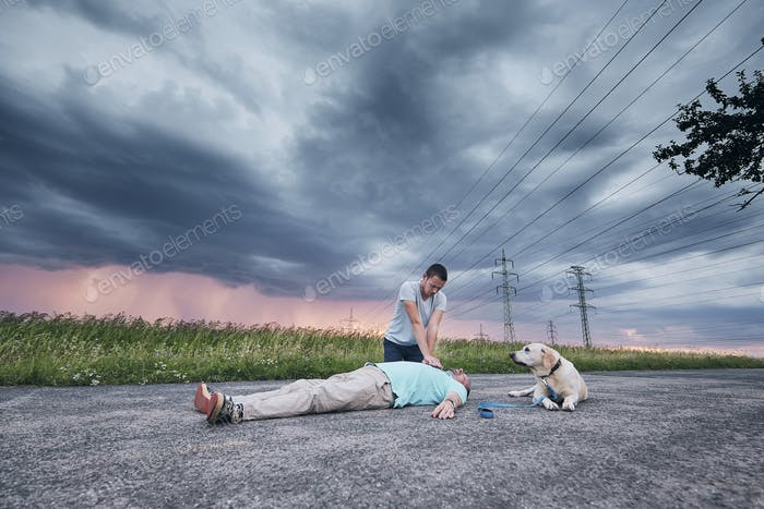 Resuscitation on the road and loyal dog