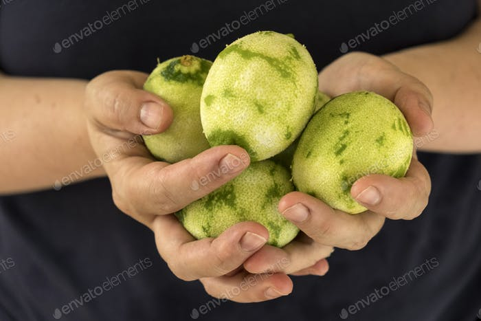 Close up of person holding limes with grated zest.