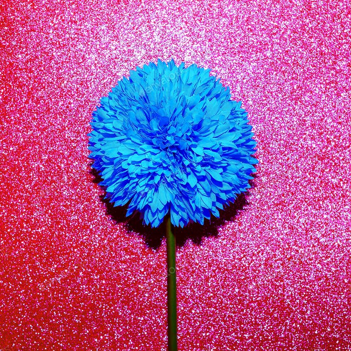Blue flower and glitter. Minimal art