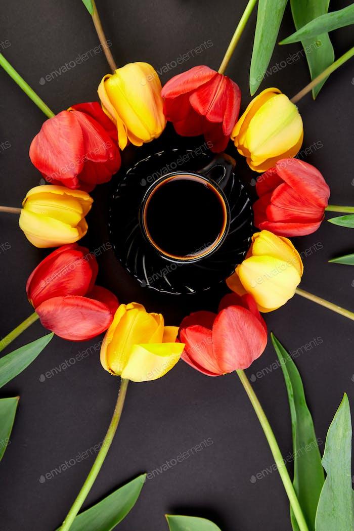 Tulips concept