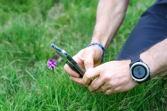 Fotografía a una flor