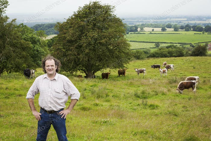 Man and a herd of English Longhorn cattle in a pasture.