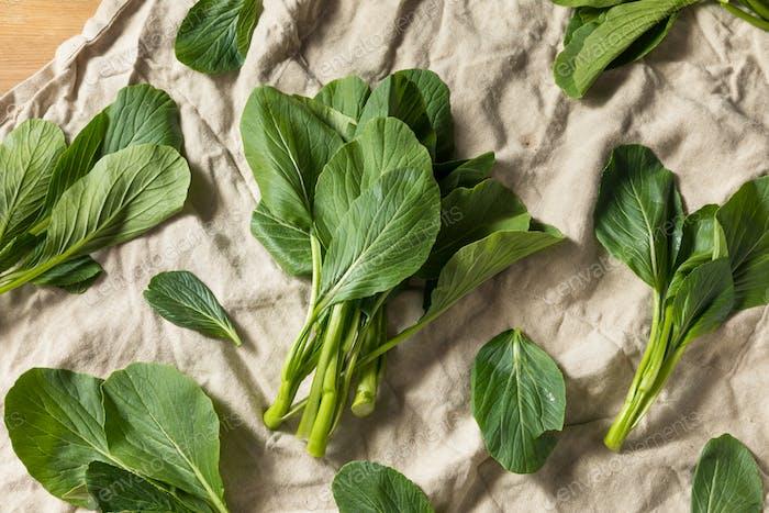 Raw Green Organic Chinese Gai Lan