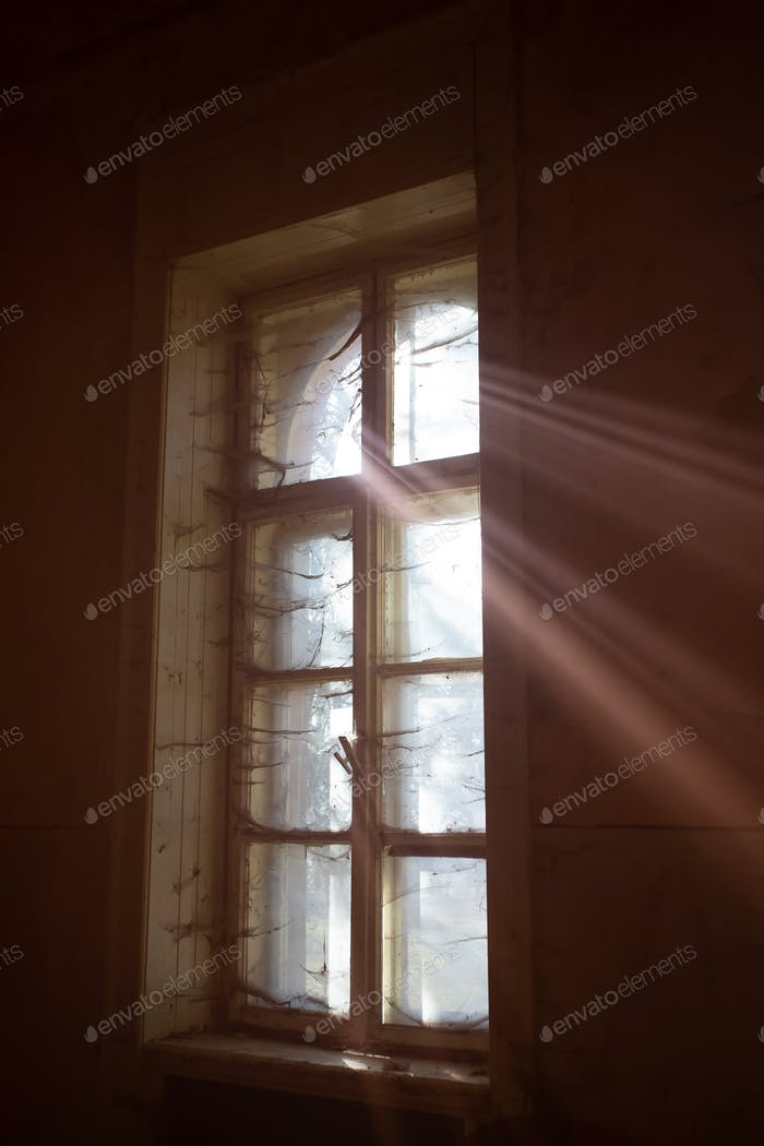 Old dirty window with web and sun rays.