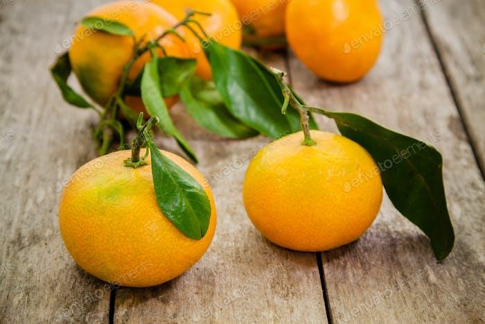 frische Bio-Mandarinen mit Blättern