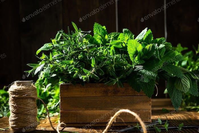 Fresh Herbs in Wooden Rustic Box. Healthy Eating. Home Grown Plants