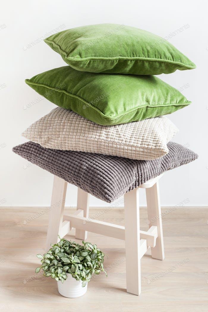 graue und grüne Kissen, Zimmerpflanze. gemütliches Zuhause