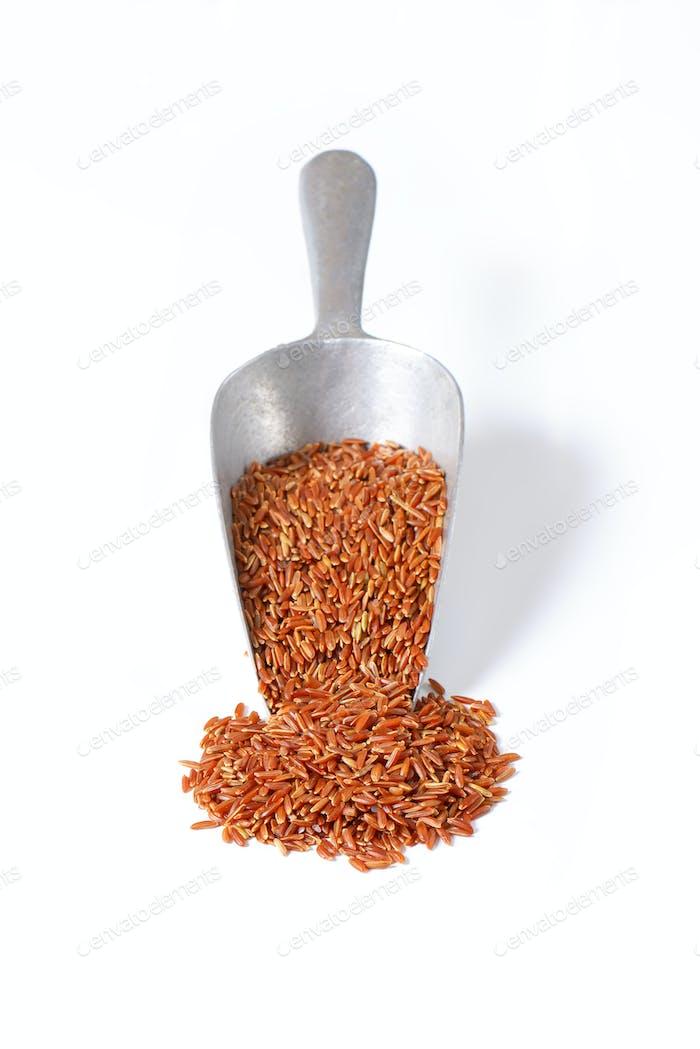 Camargue red rice