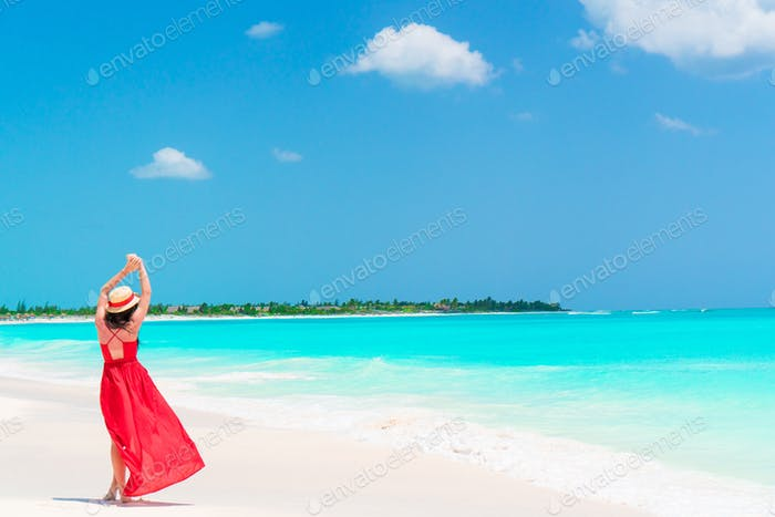 Back view of young girl in beautiful dress background the sea