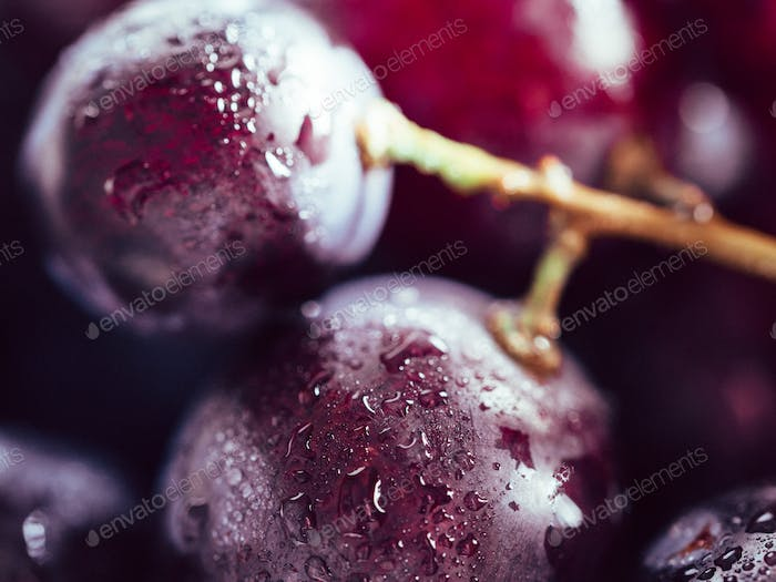 red grape with water drops close up