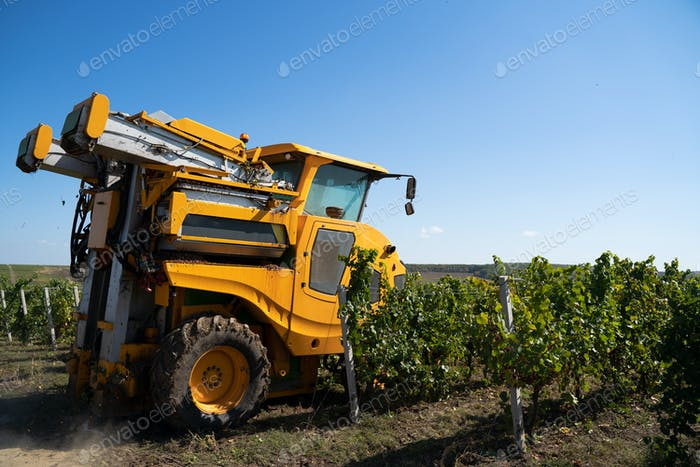 agricultural grape harvesting machine