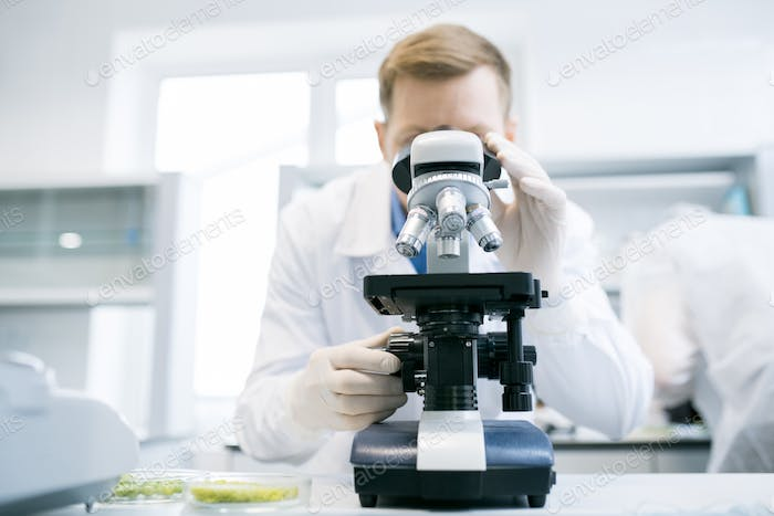 Man looking at microscope in laboratory
