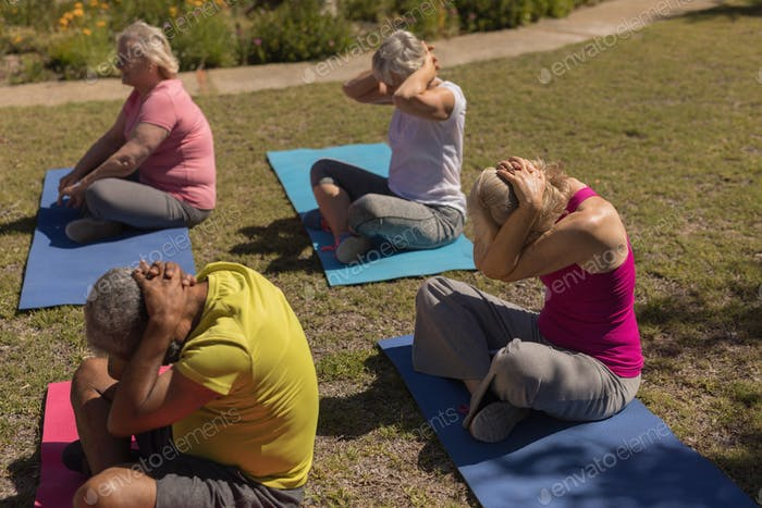 Side view of active senior people performing yoga on yoga mat in the park