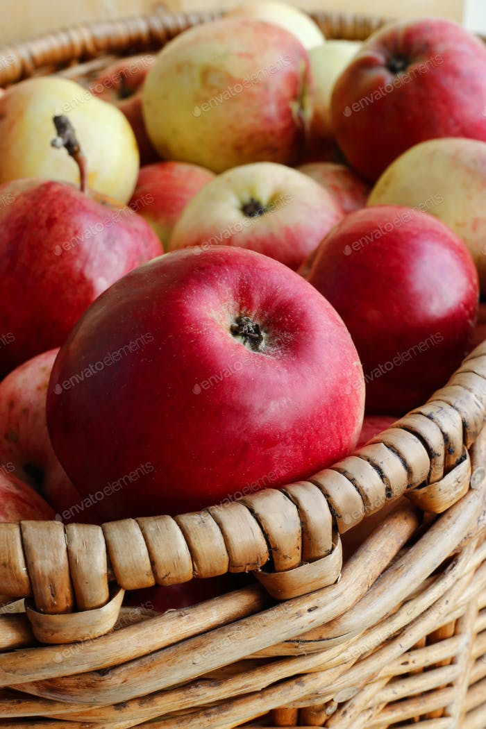 Nahaufnahme von hellen reifen Äpfeln in einem Korb