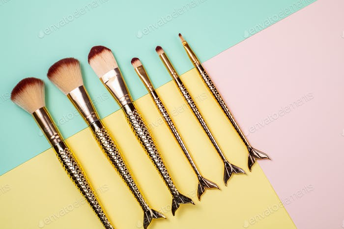 Set of Cosmetics Accessories Makeup Brushes