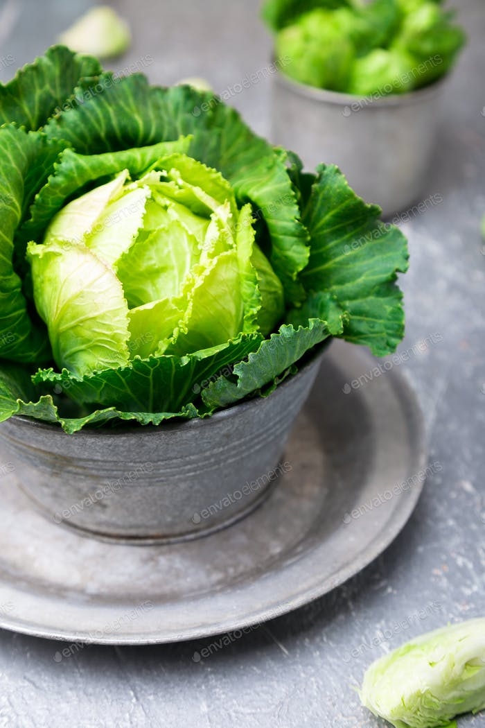 Fresh green cabbage in metal plate
