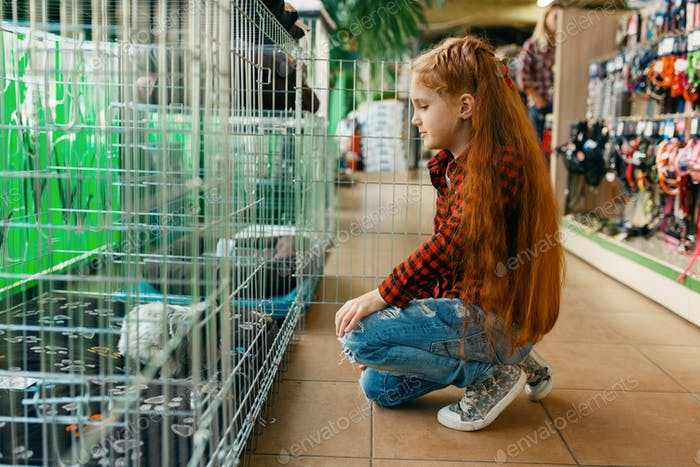 Little girl looking on cage in pet store