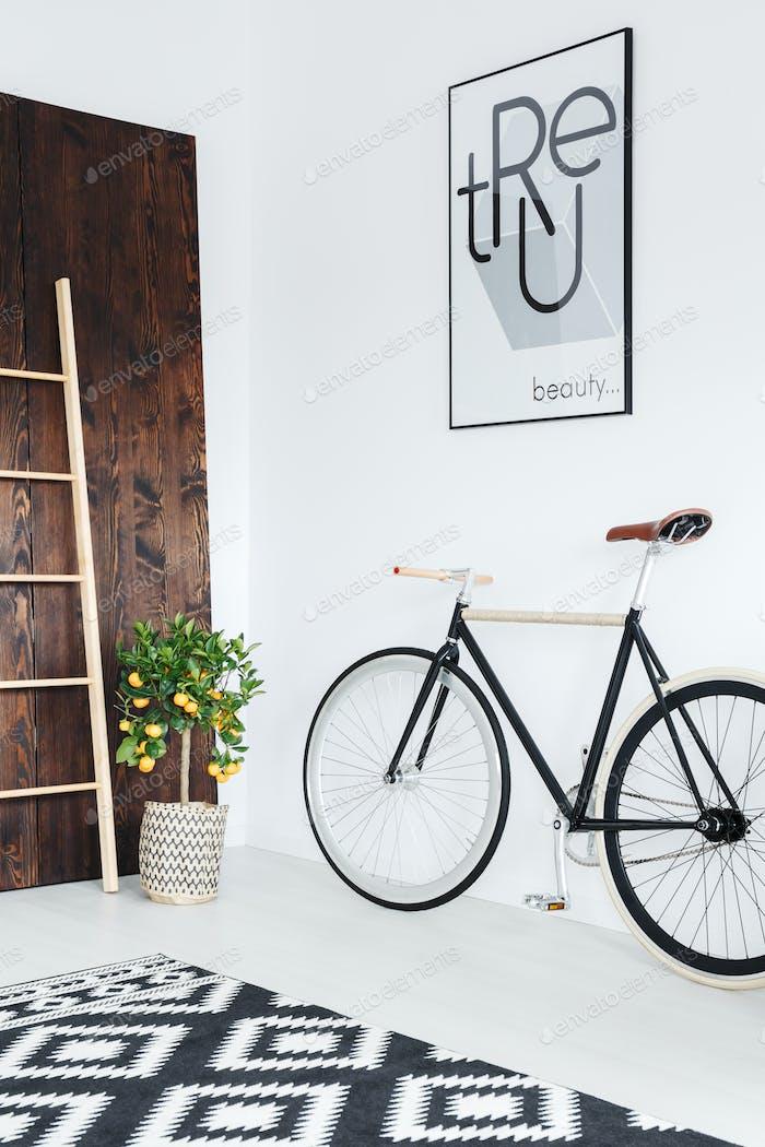Велосипед в номере