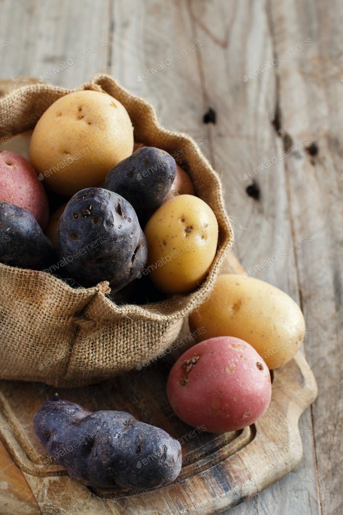 Raw multicolored potatoes